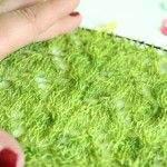 Lace stricken für Anfänger: 10 praktische Tipps